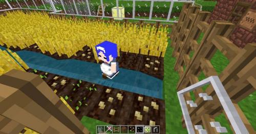 simple farm on my secret base with my helper by skates99 deg47zt-pre